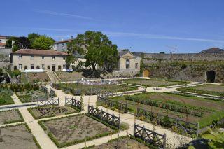 Château Colbert's Kitchen Garden