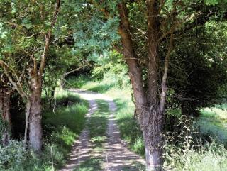 Chemin du Frêne - 7 km