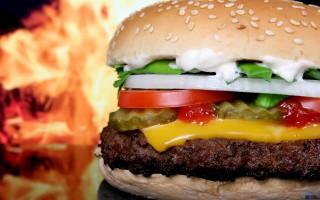 Fast Food & Brasseries