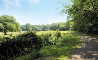 Les Hauts de Chanteloup - 15.7 km