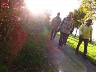 Walking, Hiking or Cycling