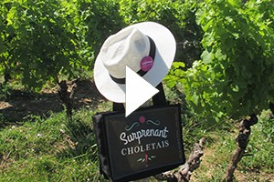 lanceur-vignoble-video-7570