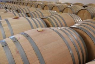 Les vins du Haut-Layon