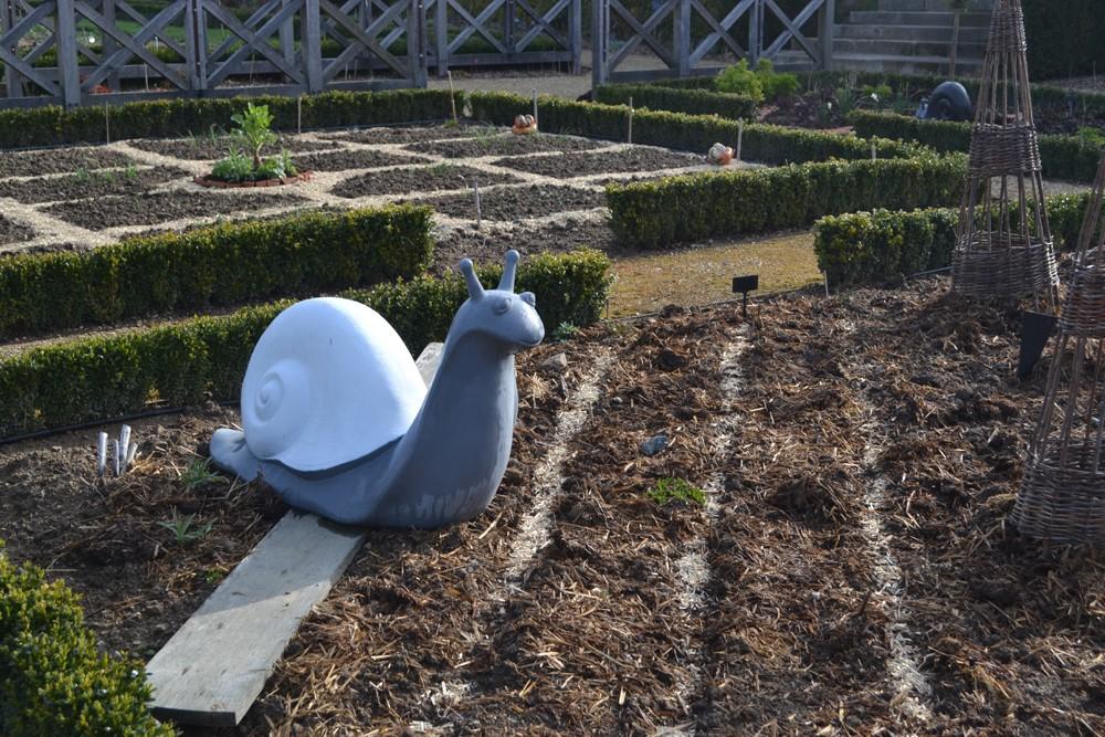 20-apprentis-jardiniers-c-otc-1247