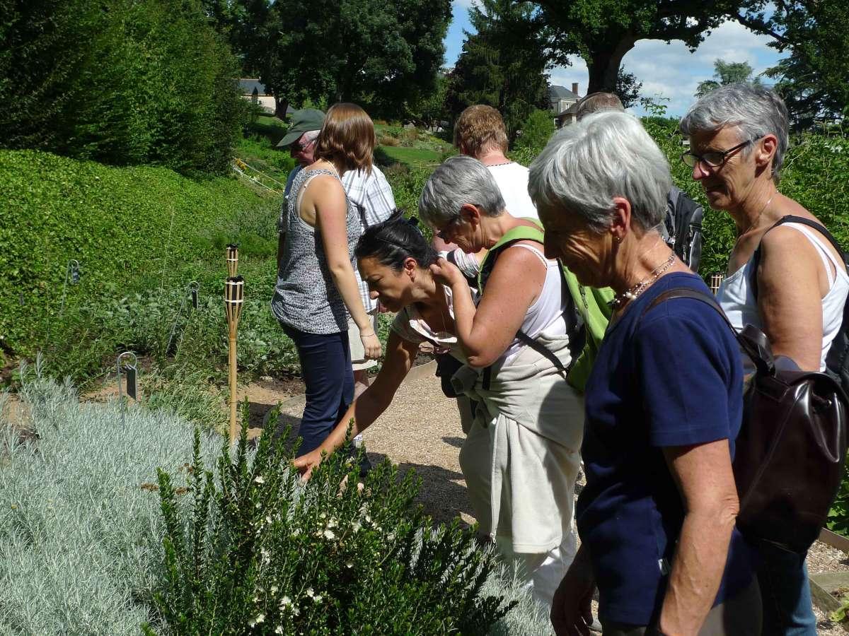 jardin-camifolia-visite-guid-e-569