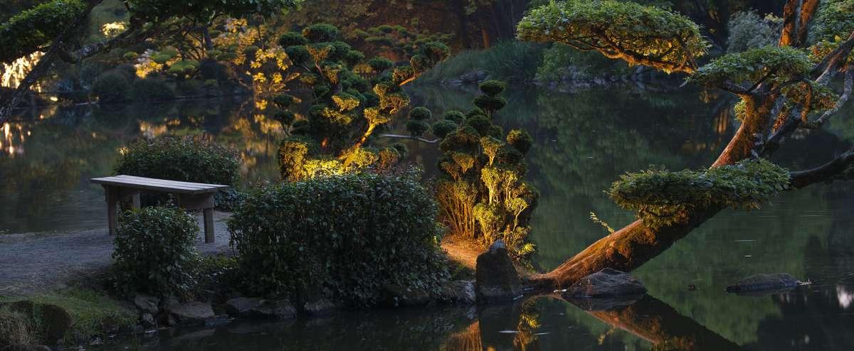 Les nocturnes du Parc Oriental