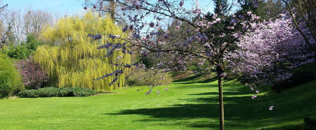 Cholet tourisme rendez vous aux jardins nature mus�e du textile jardin japonais parc oriental camifolia