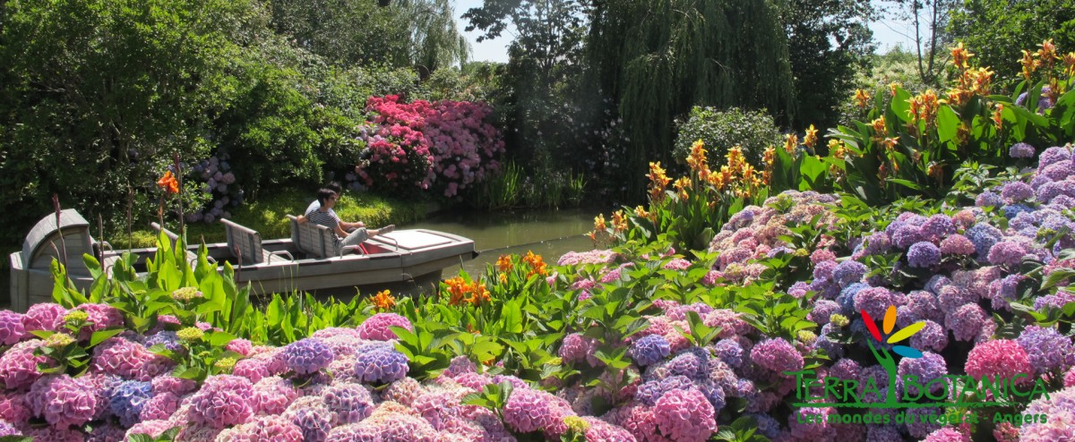 Cholet tourisme terra botanica angers premier parc � th�me v�g�tal