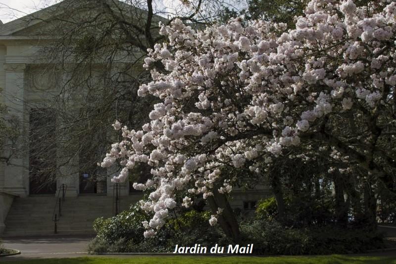 Cholet tourisme ville fleurie 4 fleurs