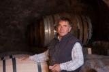 Cholet tourisme vihiersois passavant sur layon dégustation vin vignoble viticulture oenotourisme cave domaine