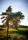Cholet tourisme golf du chene landry 18 trous