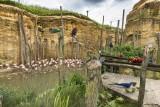 Cholet Tourisme Bioparc Zoo de Doué La fontaine 49