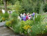 jardin-camifolia-chemille-en-anjou-1799247