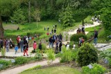 jardin-camifolia-chemille-en-anjou-49-1799246