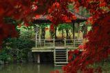 Cholet tourisme nature Maulévrier parc oriental jardin japonais lieux de visites incontournable
