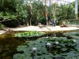terra-botanica-angers-49-001-961157