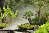Terra Botanica Angers 49