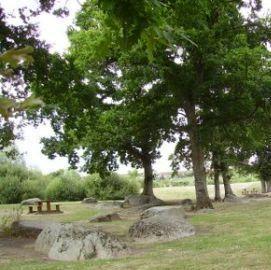 aire-de-pique-nique-parc-des-hameaux-de-l-etang-trementines-49