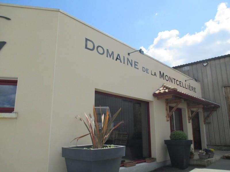 Cholet Tourisme Trémont Vigneron Oenotourisme Guéneau Montcellière Dégustation Vin Produits locaux Viticulture