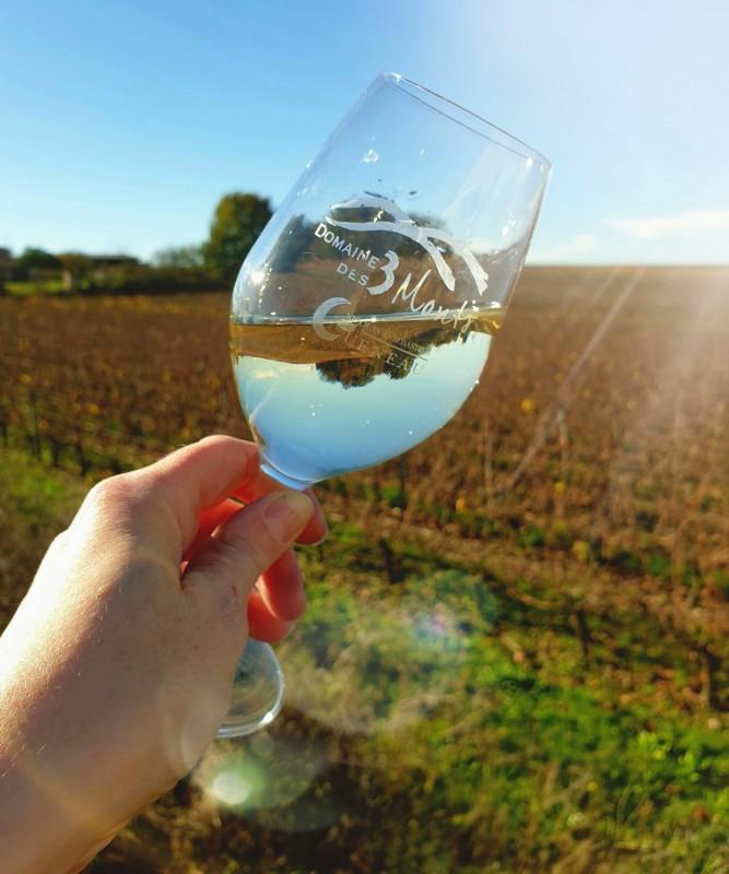 Domaine des Trois Monts Verre Vin Dégustation Vigne Trémont