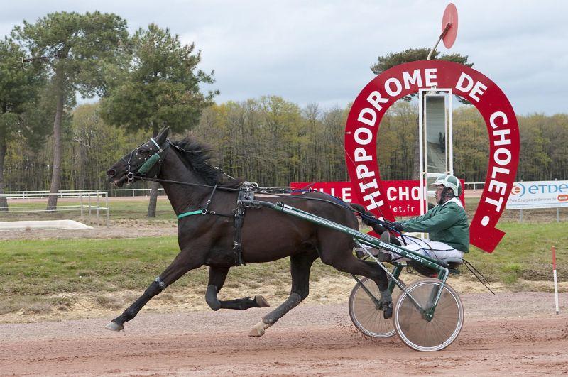 Cholet tourisme sport hippodrome Clénet cheval equestre