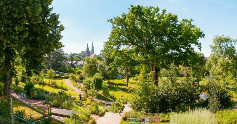 Cholet tourisme jardin de plantes aromatiques et médicinales camifolia