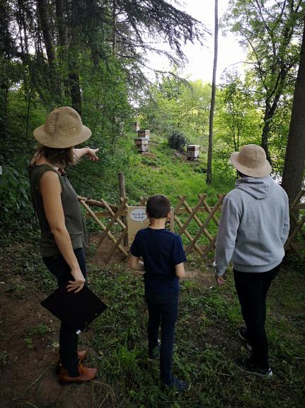 la-ruche-de-mary-famille-mary-st-andre-de-la-marche-49-1760396