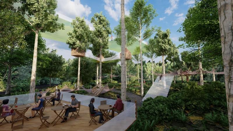 les-mysteres-de-la-foret-nouveaute-2021-terra-botanica-5-2100679