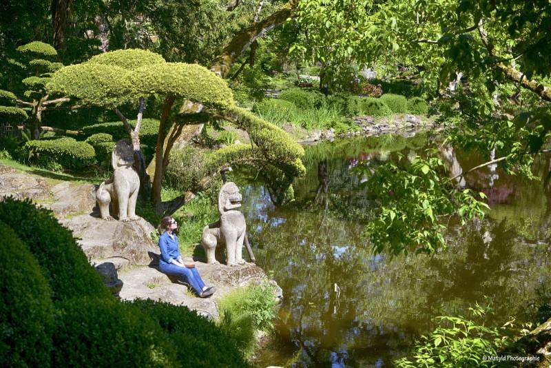 Parc Oriental De Maulevrier Parcs Et Jardins A Maulevrier