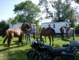 Cholet Tourisme Gîte d'Etape Le Garotin Trémentines