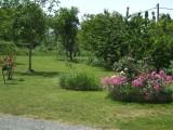 Cholet Tourisme Gîte Le Balloir Nueil sur Layon 49