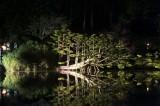 nocturnes-parc-oriental-de-maulévrier-49