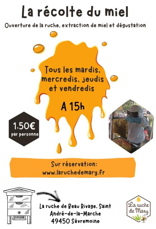 la-recolte-du-miel-544960