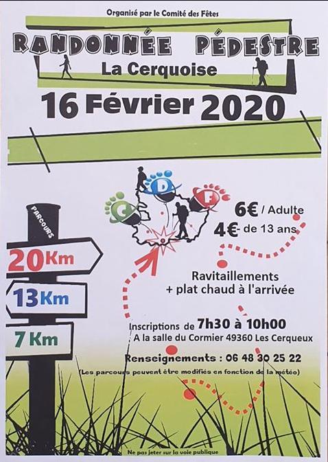 rando-les-cerqueux-460335