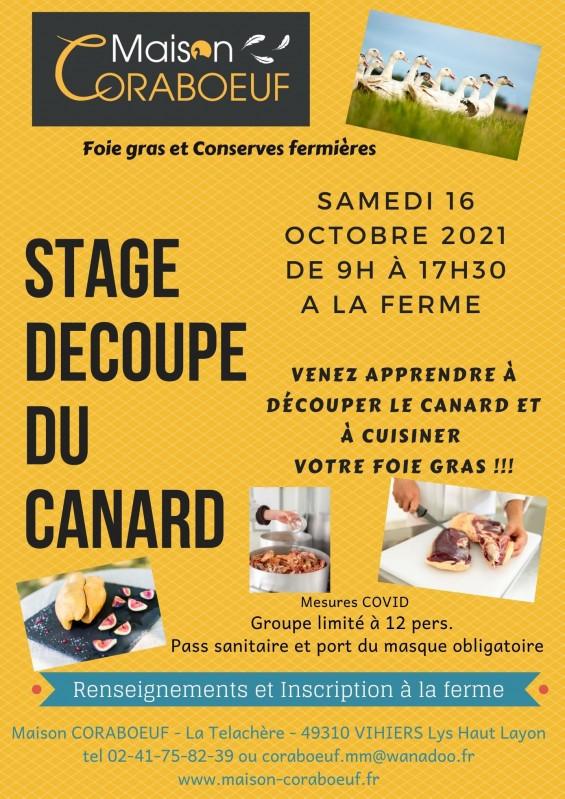 stage-coraboeuf-vihiers-49-569996