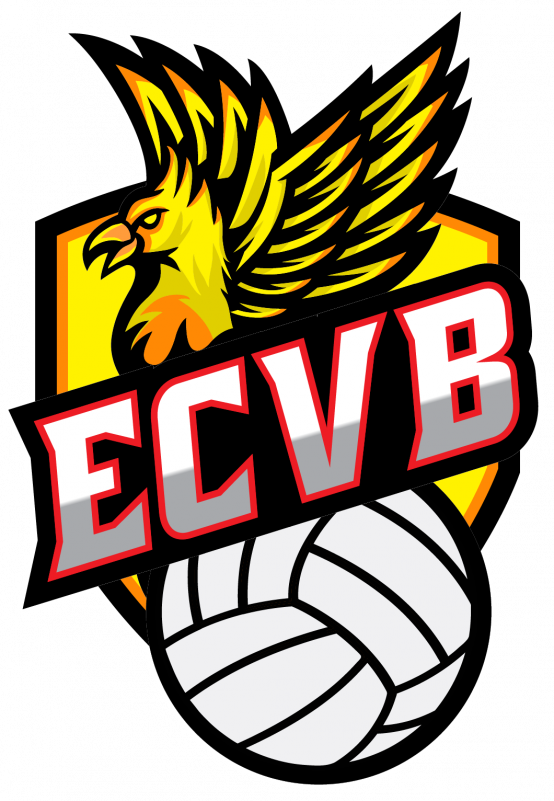 vide-grenier-entente-choletaise-volley-ball-cholet-49